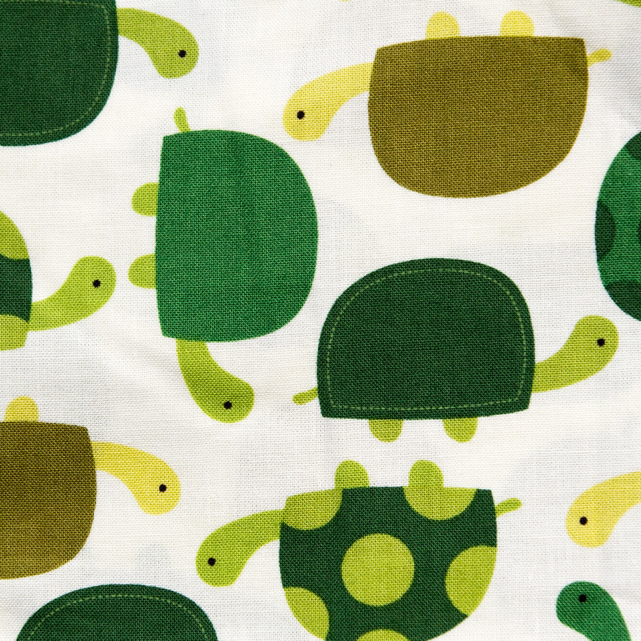 Turtle Time print