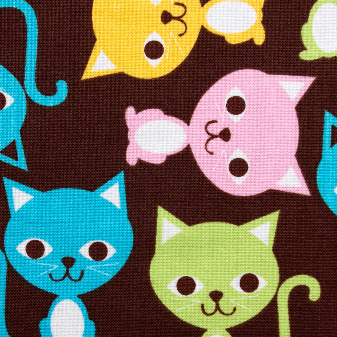 Kitty Korner print