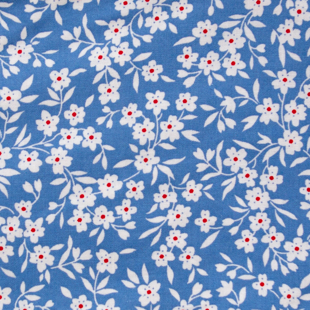 Anya print