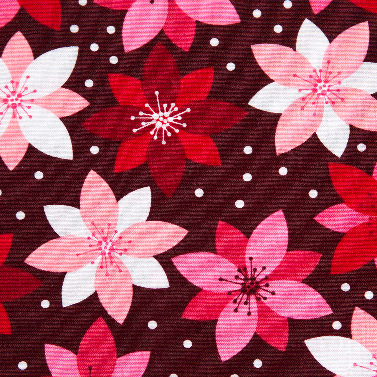 Magic Poinsettia print