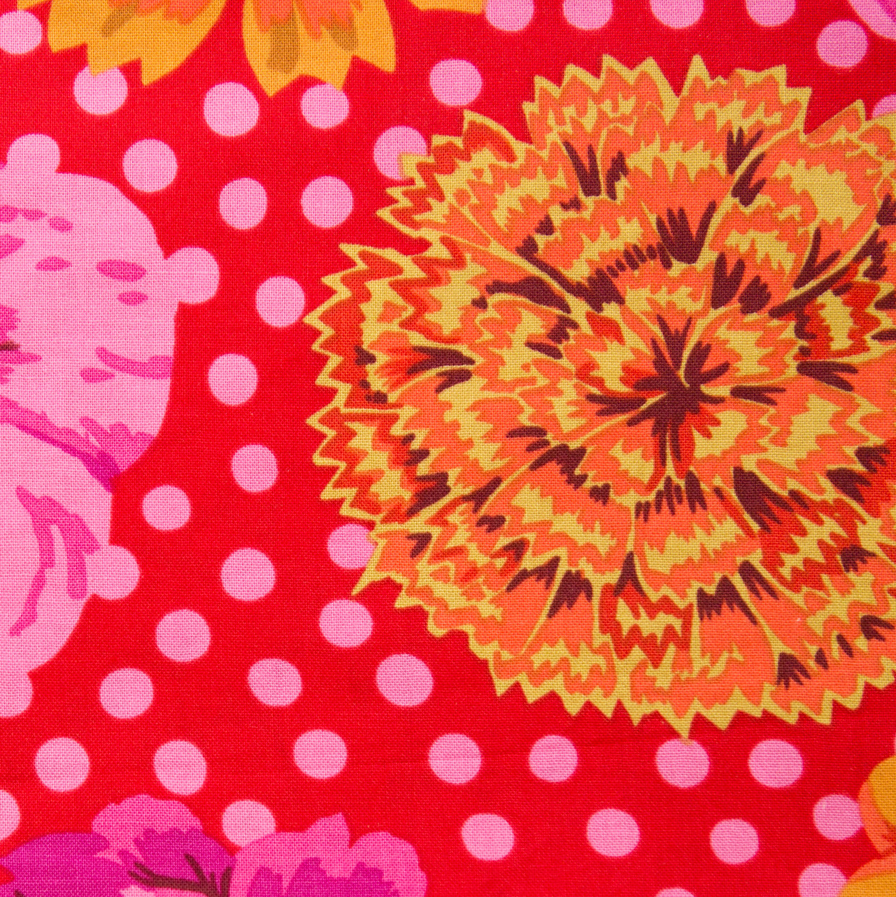 Chrysanthemum Delight print
