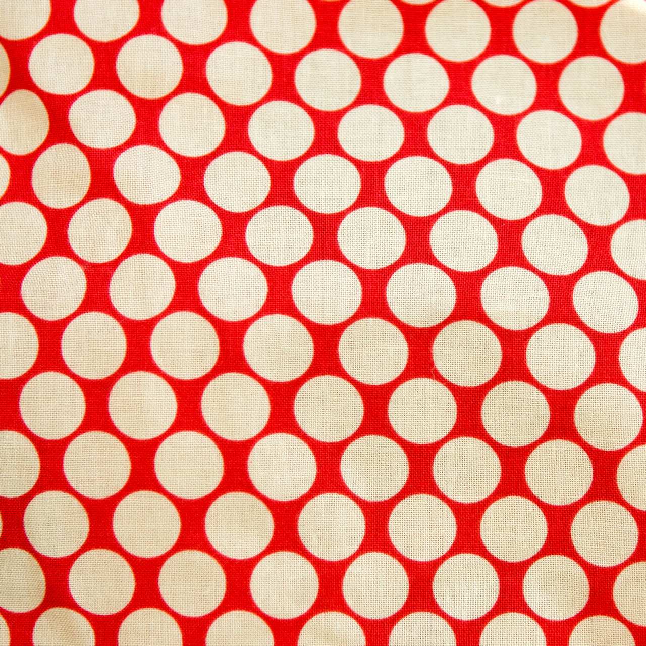 Peppermint Polkadots print