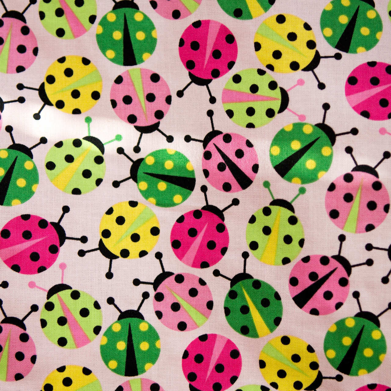 Ladybug Dance print